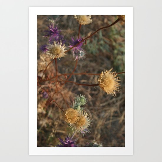 The Last Color of Fall Art Print