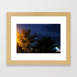 palm tree night Framed Art Print