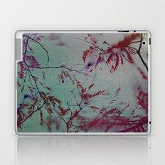 Take Me To Paradise Laptop & iPad Skin