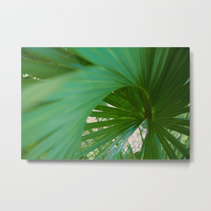 Curvy Fern Jungle Style Metal Print