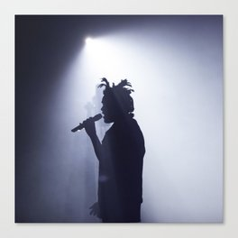 Abel on stage Canvas Print