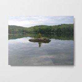 Reflecting Sadness, Along the Potomac River Metal Print