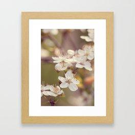 Blooming spring tree Framed Art Print
