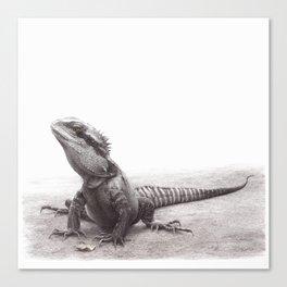 Spike the Waterdragon Canvas Print