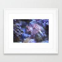 life aquatic Framed Art Prints featuring Aquatic Life by tina s tippett