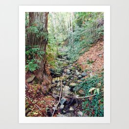 Santa Cruz Mountains Art Print