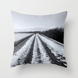Winter #2 Throw Pillow
