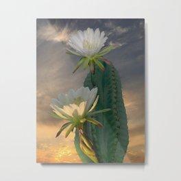 Peruvian Apple Cactus Metal Print