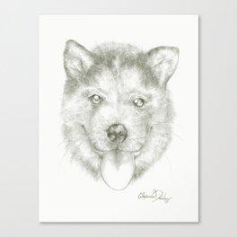 Lick Canvas Print