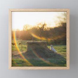 A Kid with Flare Framed Mini Art Print