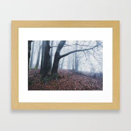 The Misty Trail Into The Unknown Forest Framed Art Print