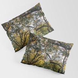 Savannah Forsyth Park VI Pillow Sham
