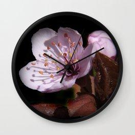 japanese cherrytree-blossom on black -2- Wall Clock
