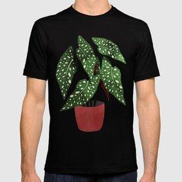 Begonia maculata pot watercolor T-shirt