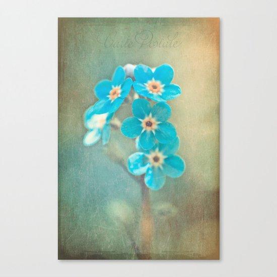 tiny treasures Canvas Print