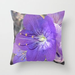 "Flower ""Early Morning"" Throw Pillow"