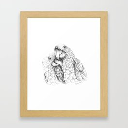 Macaw Pair In Love Framed Art Print