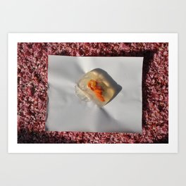 Aspic on petals Art Print