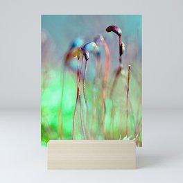 Moss seedling Mini Art Print