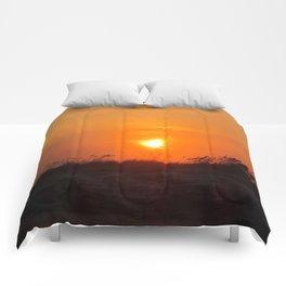 Sea Oat Sunset Comforters