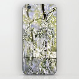 Ice iPhone Skin