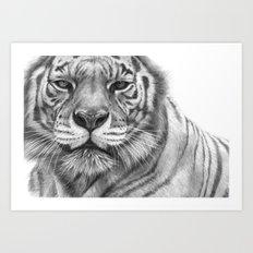 White Tigress  G2013-071 Art Print