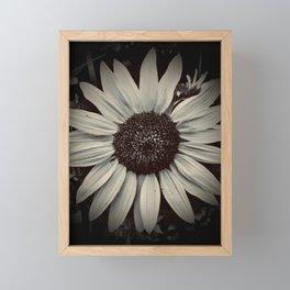 Black & White Sunflower Framed Mini Art Print
