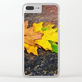 Fall Collection 2016 Clear iPhone Case