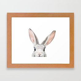Hello Bunny Framed Art Print