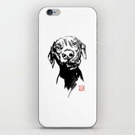 dogface 02 iPhone Skin