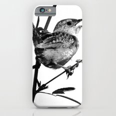 Sedge Wren Slim Case iPhone 6s
