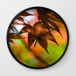 Japanese Maple in Garden - Colors of Autumn Print - Coral Foliage Wall Art - Nature Photography Wall Clock