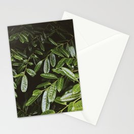 Leaves by Andrew McSparran Stationery Cards