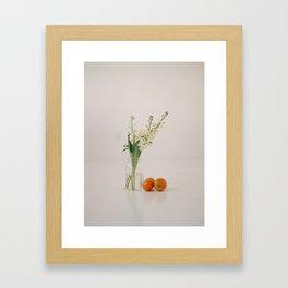 Still Life 001 Framed Art Print
