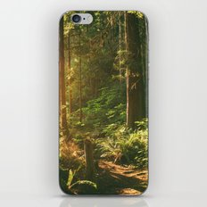 Forest Sunset iPhone & iPod Skin