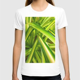 Spider Plant Leaves T-shirt