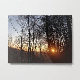 Baden V Metal Print