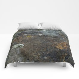 Natural Coastal Rock Texture with Lichen and Moss Comforters
