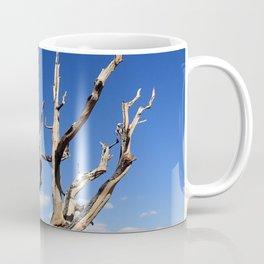 Trees of ancient times Coffee Mug