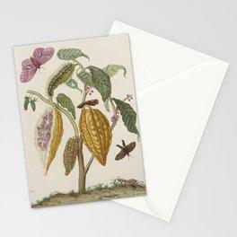 Maria Sibylla Merian Fruits Cocoa Stationery Cards