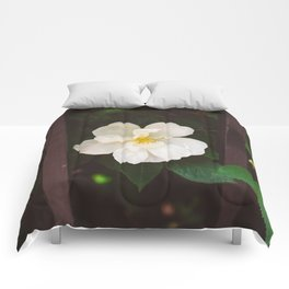 Manhattan Bloom Comforters