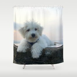 Teddy At Sunset Shower Curtain