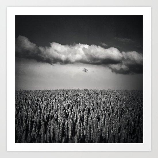 cloud over wheat field Art Print