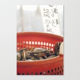 crabs Canvas Print