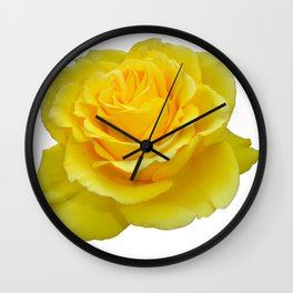 Beautiful Yellow Rose Closeup Isolated on White Wall Clock