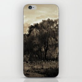 Weeping Willow Landscape iPhone Skin