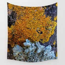 Tree Bark Pattern # 6 with Orange and Blue Lichen Wall Tapestry