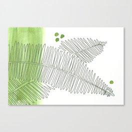 Fern Wash Canvas Print