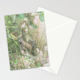 Toad with Cherry Blossom Petals Stationery Cards