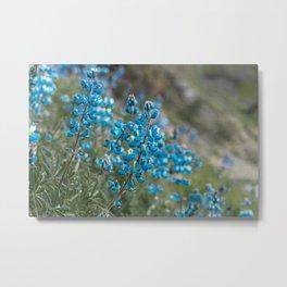 Resurrection Blue Metal Print